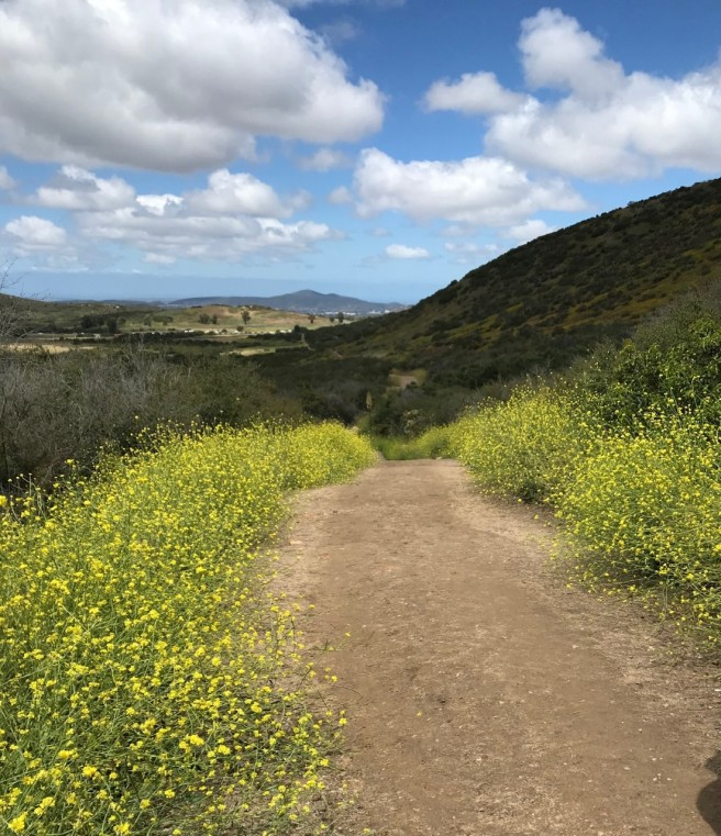 hike12