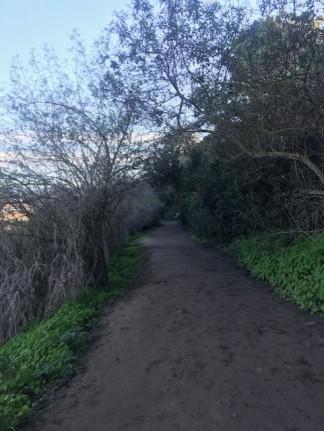 Annies Trail 3