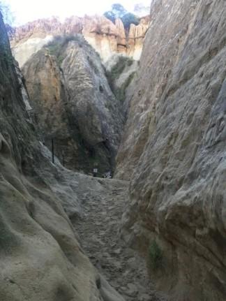 Annies Trail 7