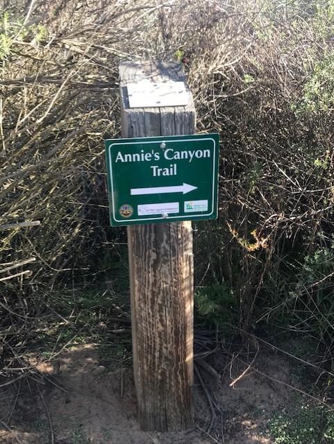 Annies Trail1